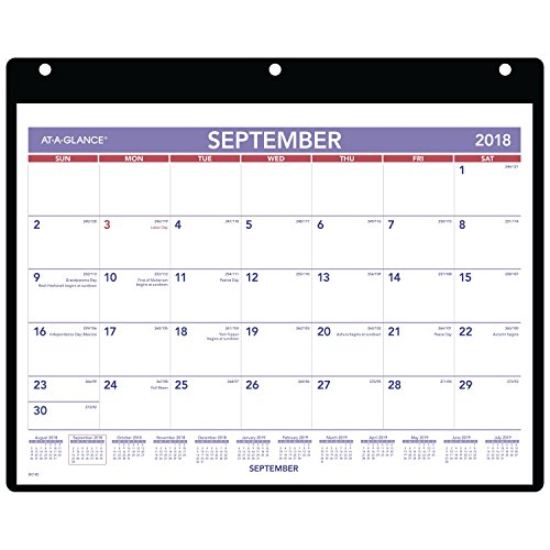 AT-A-GLANCE 2018-2019 Academic Year Desk & Wall Calendar, Small, 11 x 8-1/4, Clear Cover, Vinyl Holder (SK700) ()