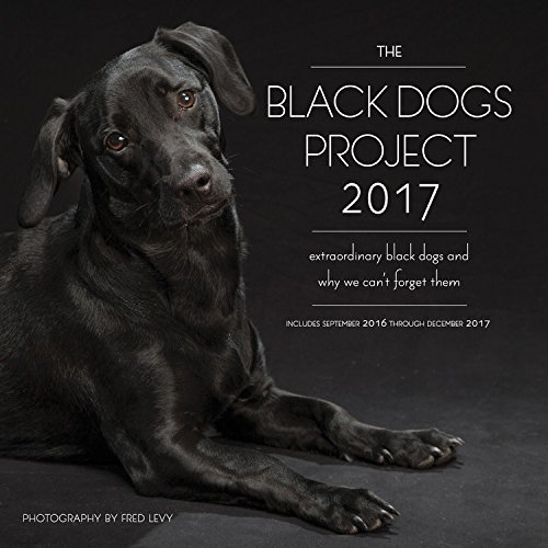 - The Black Dogs Project 2017: 16-Month Calendar September 2016 through December 2017