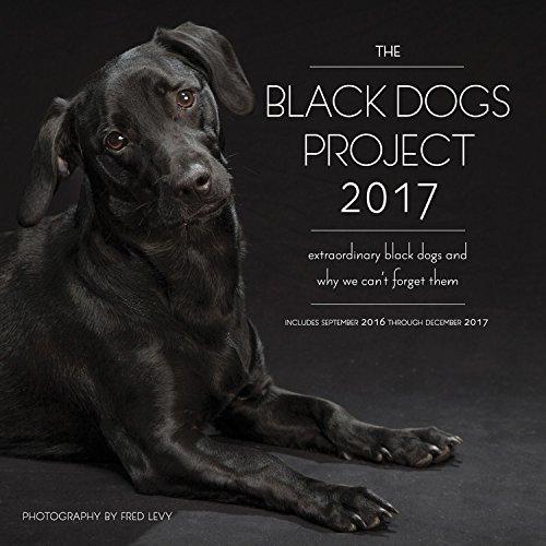 Download The Black Dogs Project 2017: 16-Month Calendar September 2016 through December 2017 pdf epub