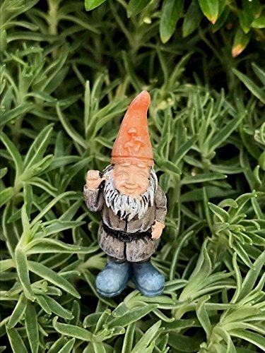 Childs Billy Collection (Fairy Garden Figurine Miniature Dollhouse FAIRY GARDEN Accessories ~ Micro Itty Bitty Billy Gnome Pick (Tri))