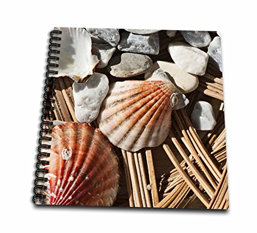 3dRose Alexis Photography - Objects - Grey pebbles and sea shells, summer vacations memories - Drawing Book 8 x 8 inch (db_273237_1)