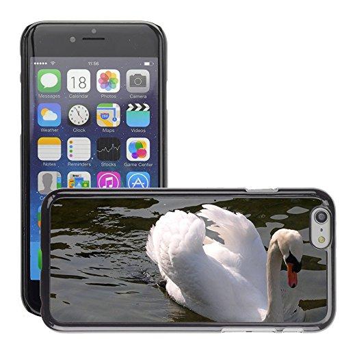 """Bild Hart Handy Schwarz Schutz Case Cover Schale Etui // M00135777 Swan Tier Zürichsee Wasser // Apple iPhone 6 PLUS 5.5"""""""
