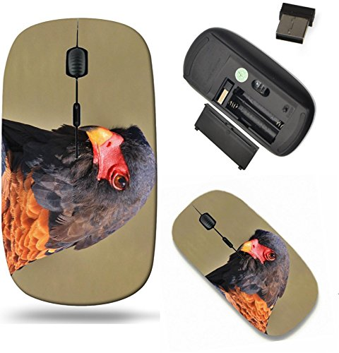(Liili Wireless Mouse Travel 2.4G Wireless Mice with USB Receiver, Click with 1000 DPI for notebook, pc, laptop, computer, mac book Bateleur Eagle Background Wild Birds from Africa Image ID 22010552)