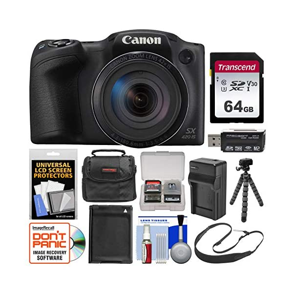 51ml5SJGuTL. SS600  - Canon PowerShot SX420 is Wi-Fi Digital Camera (Black) with 64GB Card + Case + Battery & Charger + Flex Tripod + Sling…