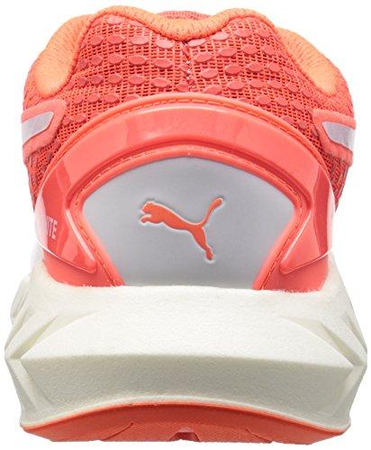 Arancione Corsa Puma Scarpa Ultimate da Donna 11 Ignite US 3D nqxzFwCYqA