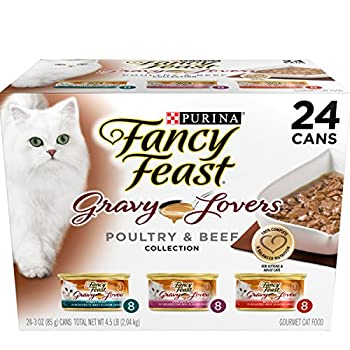 Top Wet Cat Food