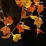 SILIVN Fall Decorations,Fall Garland,Fall Wreath,Thanksgiving Decorations,Christmas Decor Lighted Fall Garland | 8.2 Feet | 20 Lights (3PCS)
