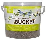 Pacific Bird & Supply Co Inc PB-0045 28 Oz Dried Mealworm