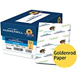 Hammermill Colored Paper, Goldenrod Printer Paper, 24lb, 8.5x11 Paper, Letter Size, 5000 Sheets / 10 Ream Case, Pastel Paper, Colorful Paper (104349C)