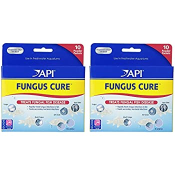 Amazon com : API FUNGUS CURE Freshwater Fish Powder Medication 10
