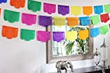 Fiesta Brands 30 Panel Pack. Mexican Papel Picado Banner.Colores de Primavera.Over 29 feet Long for Maximum Coverage. Vibrant Colors Tissue Paper. Small Size Panels. Multicolored Flowers Design