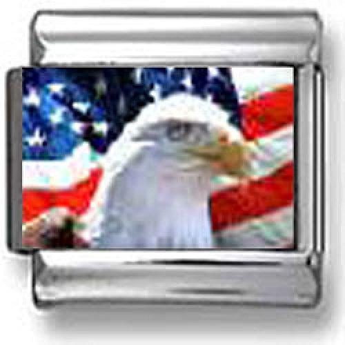 Patriotic Bald Eagle Profile American Flag Italian charm