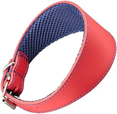 Arppe 195376045103 Collar Galgo Cuero Forro 3D Amazone, Rojo y ...