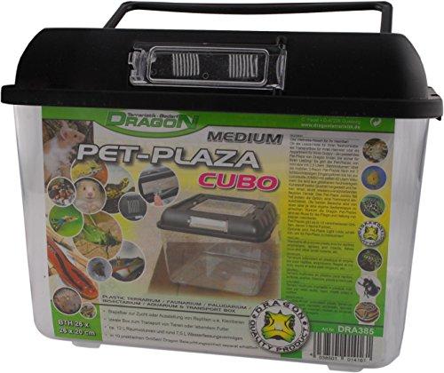 Dragon - PET PLAZA CUBO - Brutbox - Faunarium - Extra Stabile - Kunststoffbox Medium - 26 x 26 x 20 cm