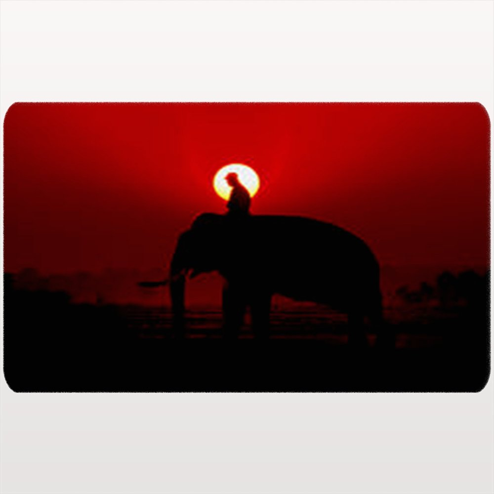 DIYCow Door Mats Welcome Doormats Silhouette Thai Elephant On Sunset Nature Parks Outdoor Home Decor Non-Slip 18X30 Inches Indoor/Outdoor/Front Door/Bathroom Mats by DIYCow