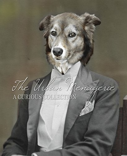[Anthropomorphic Colorized Portrait, Border Collie Gentleman Art Print, Multiple Sizes Available,] (Inanimate Object Costume)