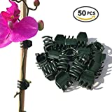 Vtete 50 PCS Large Size Orchid Clips and Garden Support Clips Green ( Not with Flower and Plant Spike)