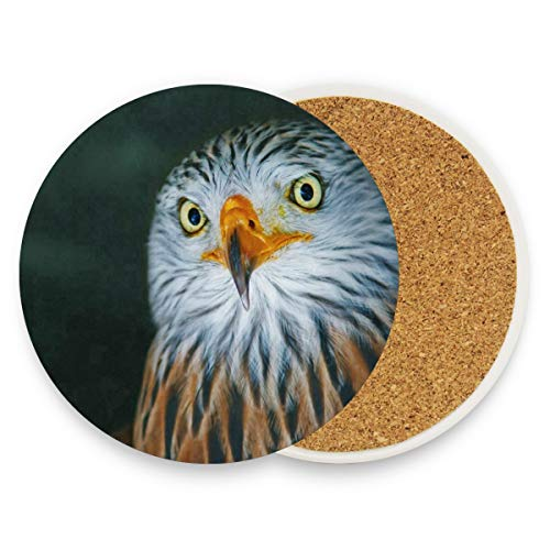 Owl Temple Club - Owl Coasters, Prevent Furniture From Dirty And Scratched, Round Cork Coasters Set Suitable For Kinds Of Mugs And Cups, Living Room Decorations Gift 1 Piece