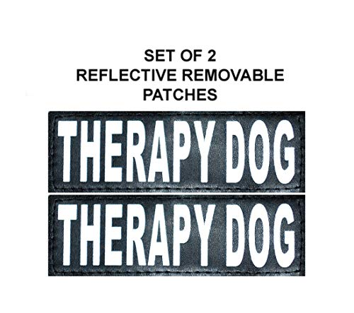 (Doggie Stylz Set of 2 Reflective Therapy Dog Removable Patches for Service Dog Harnesses & Vests. (Large 6