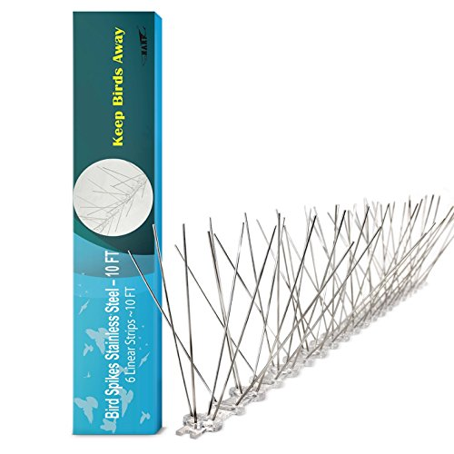 Shark 10ft Stainless Steel Bird Spikes - Keep Birds Aways, Pigeon, Seagull (Bird Deterrent Spikes)