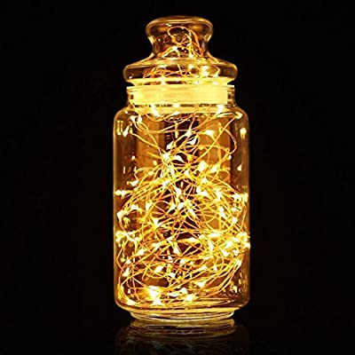 Amposei USB Powered Copper Wire LED Starry String Lights for Christmas Wedding Decoration 33FT 100 LEDs Warm White