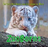 ZooBorns: The Cutest Baby Animals from Zoos Around the World! by Andrew Bleiman (2010-09-28)