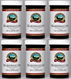 Naturessunshine Marshmallow Respiratory System Support 450 mg 100 Capsules (Pack of 6)
