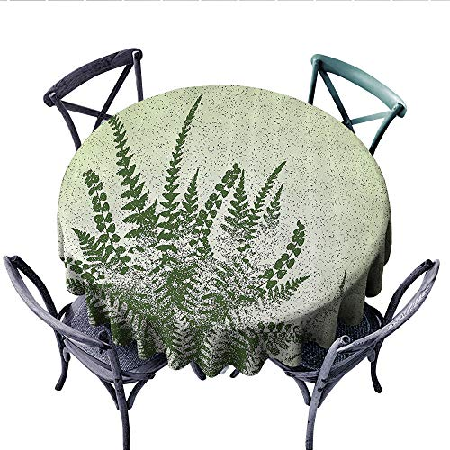 Green Decor Circle Tablecloth Nature Botanic Exotic Plants Aloe Vera Leaves and Grunge Image Flannel Tablecloth (Round, 70 Inch, Pale Green Olive Green)