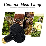 OMAYKEY 100W 2 Pack Ceramic Heat Lamp with 1-pcs Digital-Thermometer, Infrared Reptile Heat Emitter Heater Lamp Bulb for Pet Brooder Coop Chicken Lizard Turtle Snake Aquarium, No Light No Harm 10