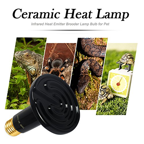 Omaykey 2 Pack 100w Ceramic Heat Lamp With 1 Pcs Digital Thermometer Infrared Reptile Heat