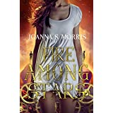 Fire Among Stars (Echo Series Book 3)