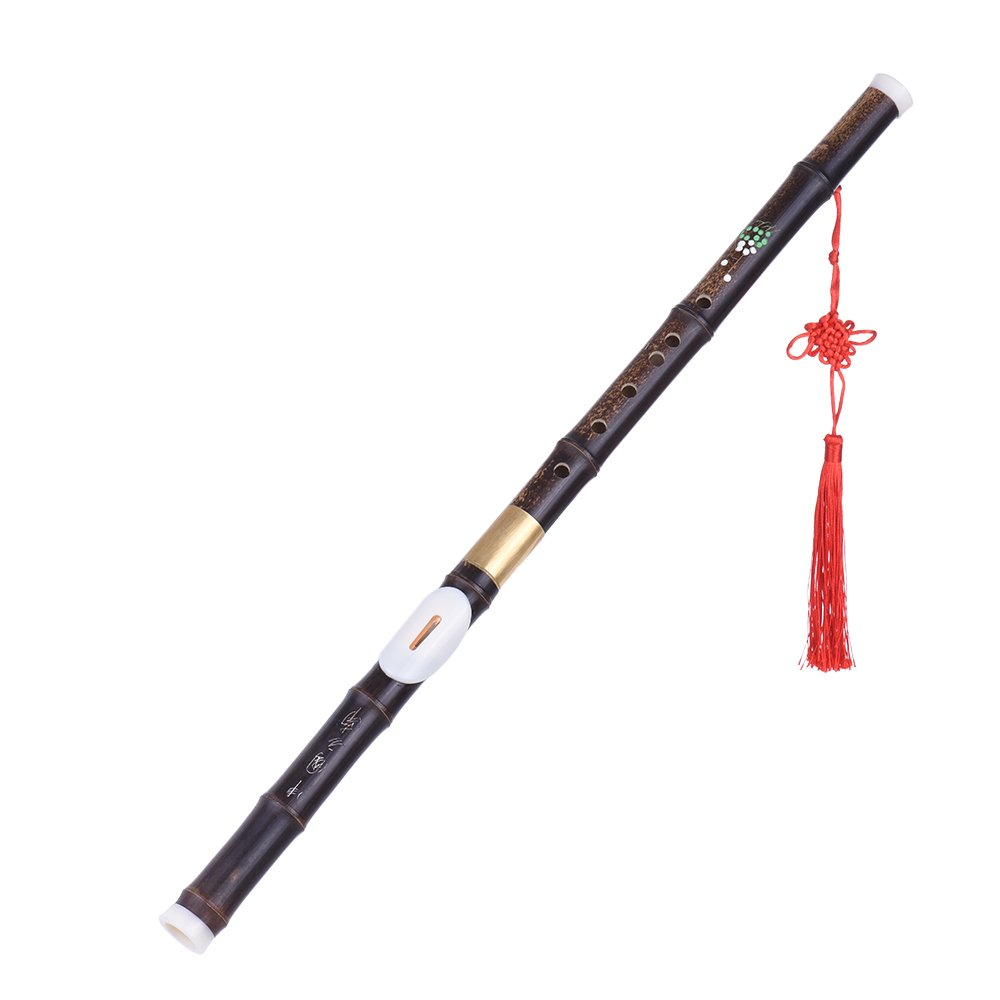 Andoer Detchable Natural Black Bamboo Bawu Ba Wu Transverse Flute Pipe Musical Instrument in G Key for Beginner Music Lovers as Gift