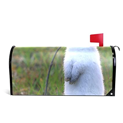 Amazon.com: CHENG XIN Mailbox Cover Personalized Cute White Rabbit ...
