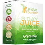 Best 3 Day Cleanses - 3 Day Juice Cleanse Detox | 24 Single Review