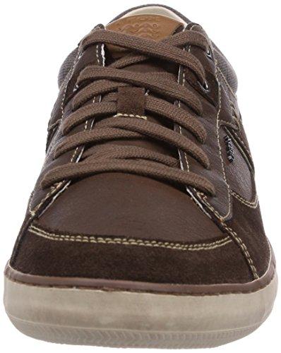 Geox U BOX C - zapatilla deportiva de cuero hombre marrón - Braun (CHESTNUT/DK BROWNC6034)