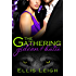 The Gathering Tales: Gideon and Kalie