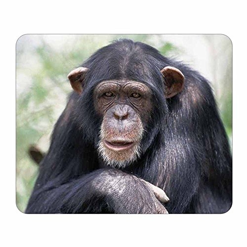 - Chimpanzee Monkey Face Mouse Pad - Wildlife Animal Theme Design - Stationery Gift - Computer Office Business School Supplies