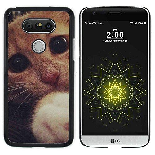 STPlus Gato en una caja Animal Carcasa Funda Rigida Para LG G5 #11