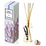 Urban Naturals Lavender Fields Oil Essential Oil Reed Diffuser Set Real Lavender Stems! French Blossoms, Geranium & Clary Sage | #1 Gift Idea Aromatherapy & Stress Relief