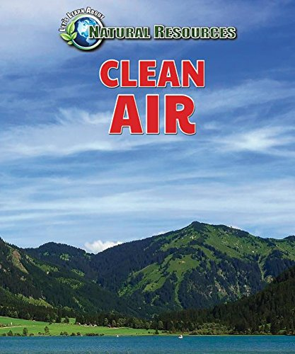 Download Clean Air (Let's Learn about Natural Resources) pdf