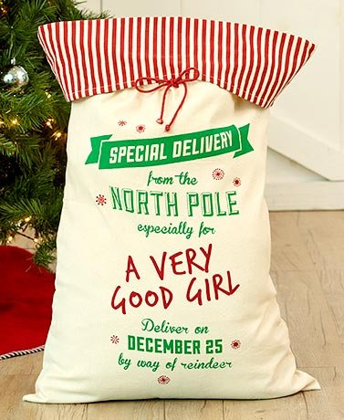 Special Delivery Oversized Gift Sacks (Good Girl) (Unique Delivery Gifts)