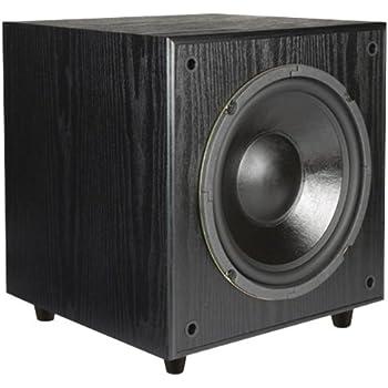 Amazon.com: Pinnacle Speakers Digital Sub 100 10-Inch 100