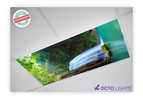 Waterfall Two Light (Waterfall 010 2x4 Flexible Fluorescent Light Cover)