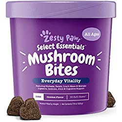 Organic Mushroom Chewable Treats for Dogs - for Dog Hip & Joint Health + Digestive & Immune Support - 14 Mushrooms Complex with Shiitake, Lion's Mane & Turkey Tail + Vitamins & Minerals - 90 Count