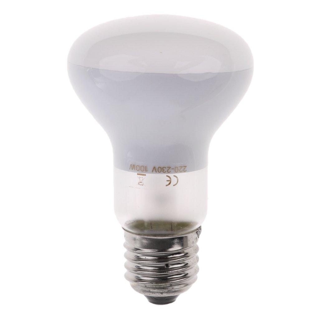 Homyl White 220V E27 Heat Basking Lamp Breeding Heat Lamp Light Bulb 50W/60W/75W/100W - 100W