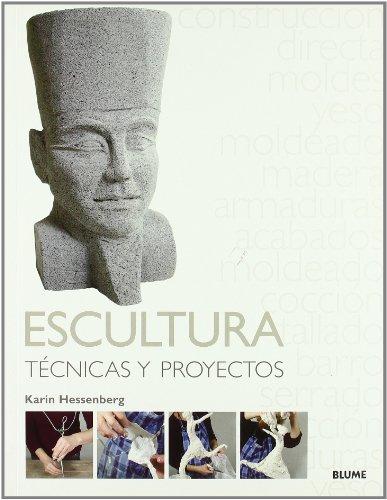 Descargar Libro Técnicas Y Proyectos. Escultura Karin Hessenberg