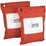 Activated Charcoal Odor Absorber in Bamboo Bag 1.1 lb Total (2 Pack); All-Natural Renewable Odor Control for Home, Car, Closet, Locker, Etc