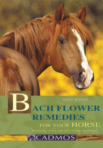 Bach Flower Remedies for Your Horse: Reducing Stress and Alleviating Symptoms