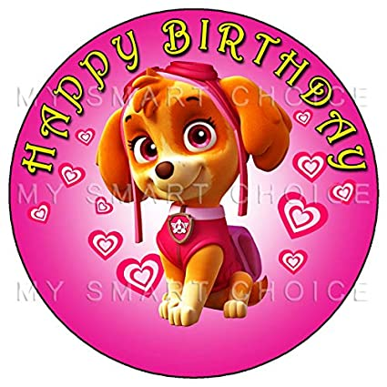 Paw Patrol Skye Party 7 5 Personalised Round Edible Icing Cake Topper 2