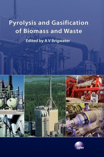 Pyrolysis and Gasification of Biomass and Waste